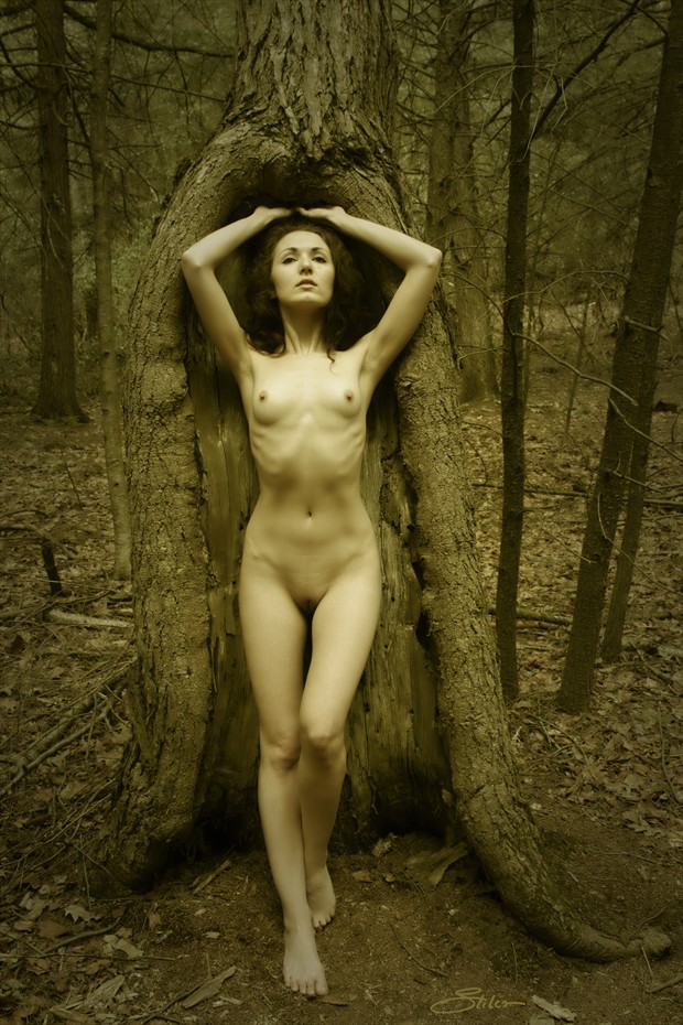 Shawl Artistic Nude Photo by Artist Kevin Stiles