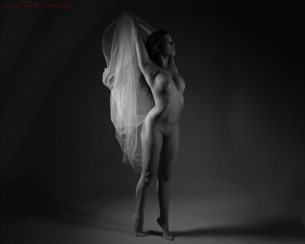 Sheer Mood Artistic Nude Photo by Photographer Miller Box Photo
