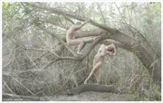 Shelter beneath crumbling branches Artistic Nude Photo by Photographer balm in Gilead