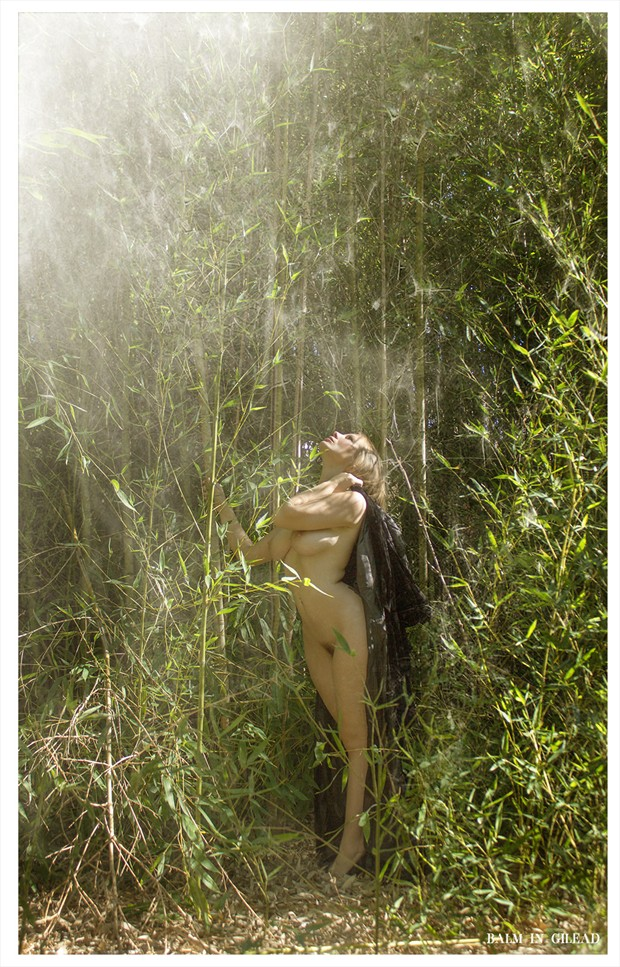Shine Artistic Nude Photo by Photographer balm in Gilead