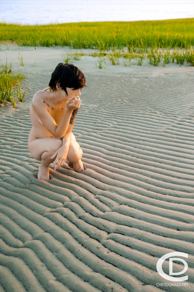 Shorebird Artistic Nude Photo by Photographer Christopher Donald