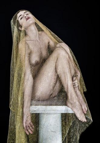 Shrouded Artistic Nude Photo by Photographer lancepatrickimages
