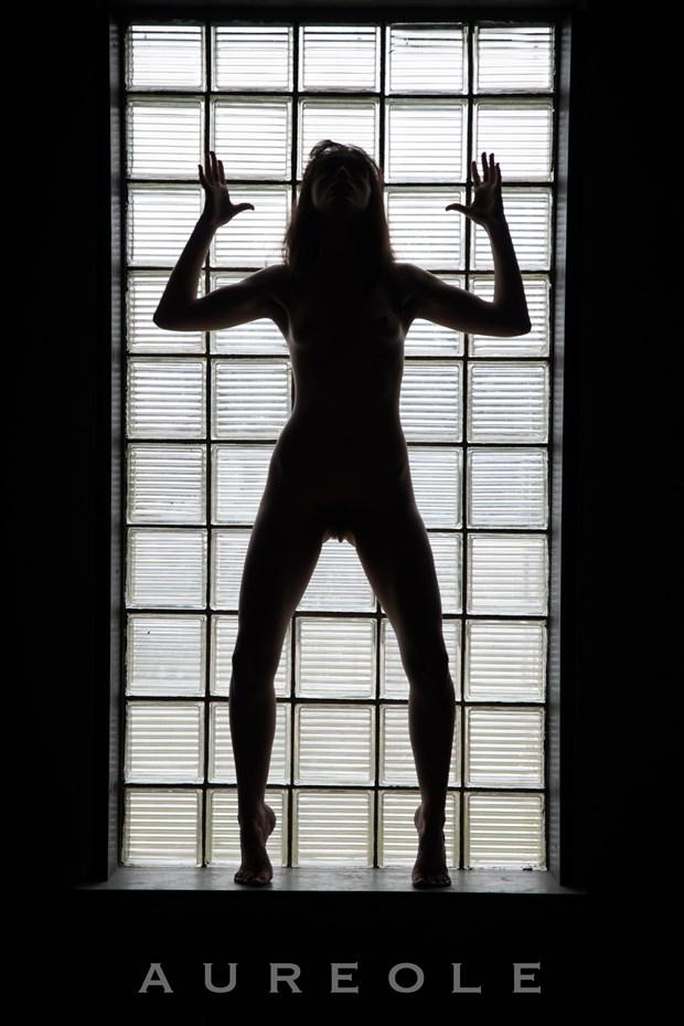 Silhouette Figure Study Photo by Model Sirena E. Wren
