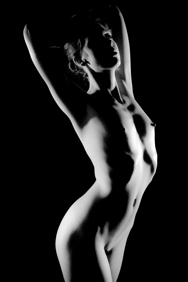 Silverline Artistic Nude Photo by Photographer Jakz