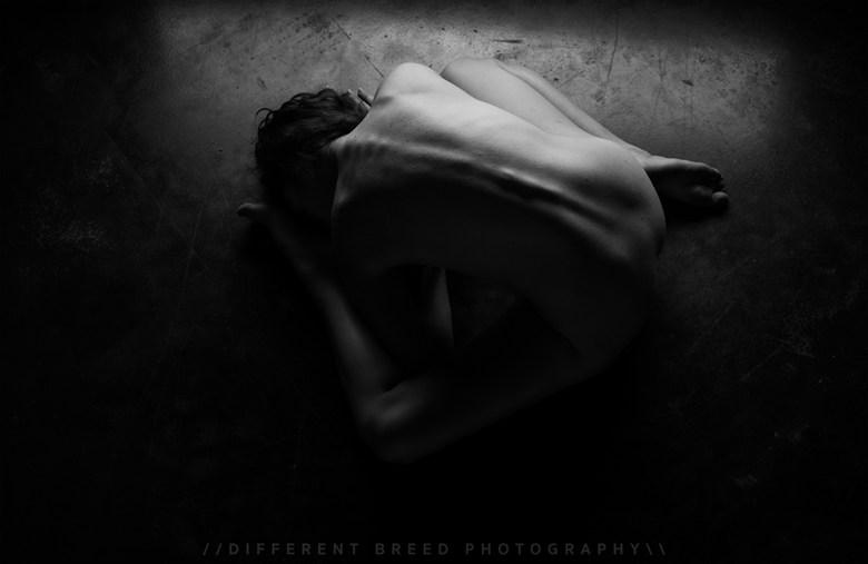 Simplicity Artistic Nude Photo by Model Sirena E. Wren