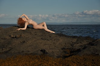 Siren of the Sea Artistic Nude Photo by Photographer Calandra Images