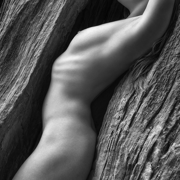 Skin and Stone Artistic Nude Photo by Photographer Greg Hensel