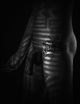 Skin ticket Artistic Nude Photo by Photographer pyriel