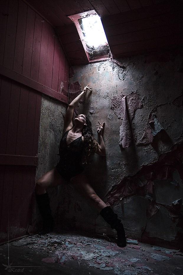 Skylight Gothic Photo by Photographer Kestrel