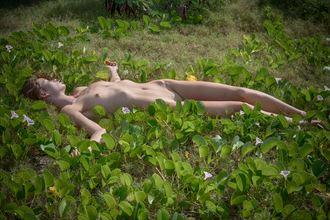 Sleeping Nature Artwork by Photographer Robearth