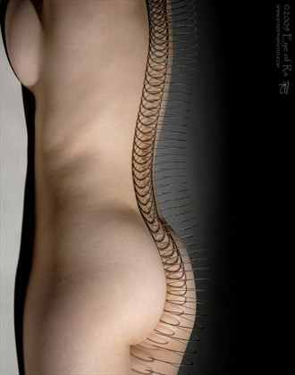 Slinky Artistic Nude Photo by Photographer Eye of Ra Photography
