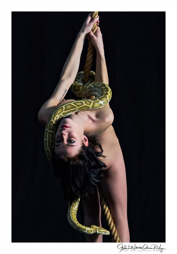 Snake business Artistic Nude Photo by Photographer Studio21networks