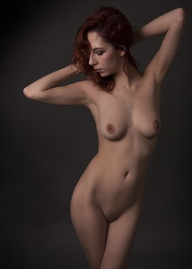 Soft elegance Artistic Nude Photo by Photographer Tommy 2's
