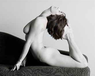 Soft strength Artistic Nude Photo by Photographer Bill Irwin