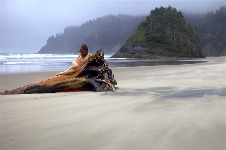 Solo, female nude, reclining on driftwood tree, at seaside. Artistic Nude Photo by Photographer Larry