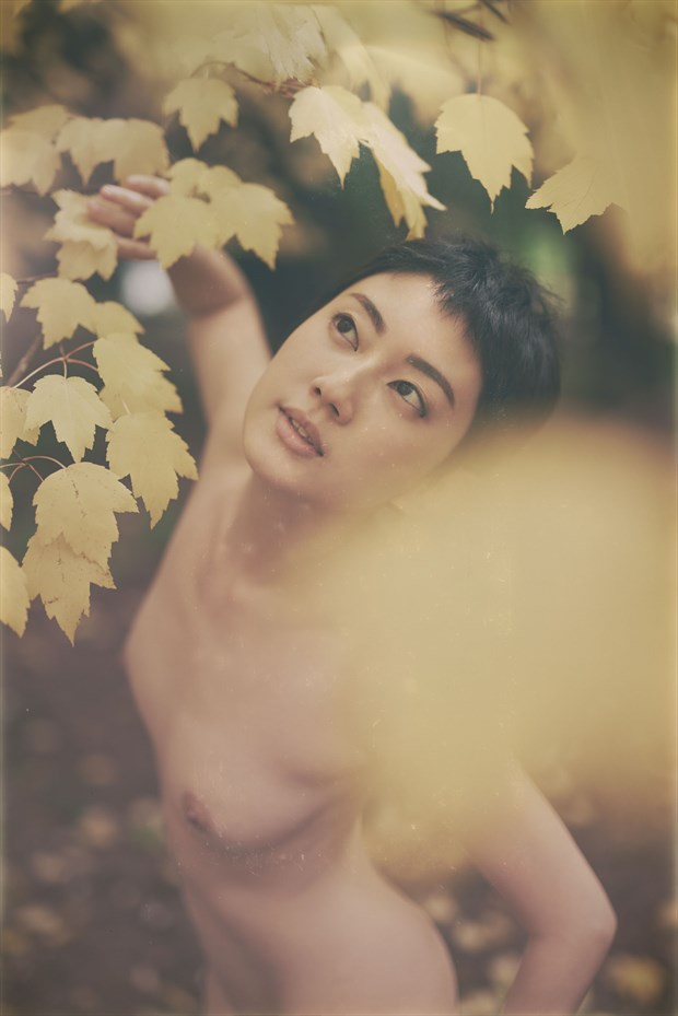 Sonya   Autumn Leaves Artistic Nude Photo by Photographer Keith Persall
