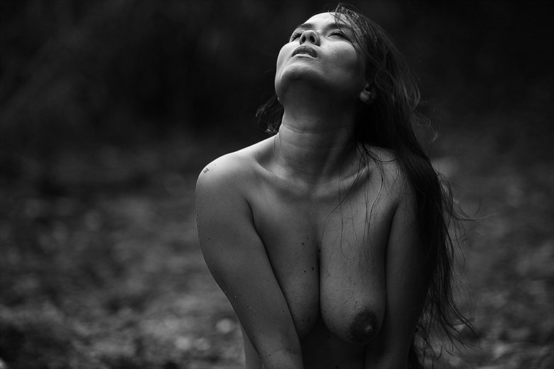 Soulscapes 09 Artistic Nude Photo by Photographer Iroiseorient