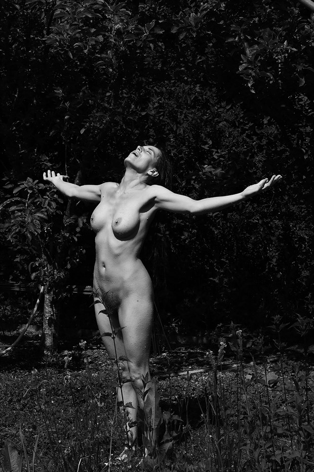 Soulscapes 133 Artistic Nude Photo by Photographer Iroiseorient