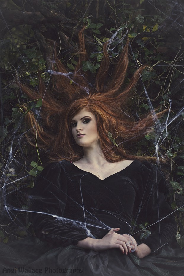 Spellbound Nature Photo by Photographer AngiW