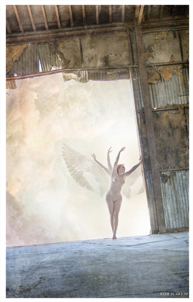 Spread thy wings Artistic Nude Photo by Photographer balm in Gilead