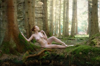Spring Mist amoungst the Trees Artistic Nude Photo by Photographer Rascallyfox