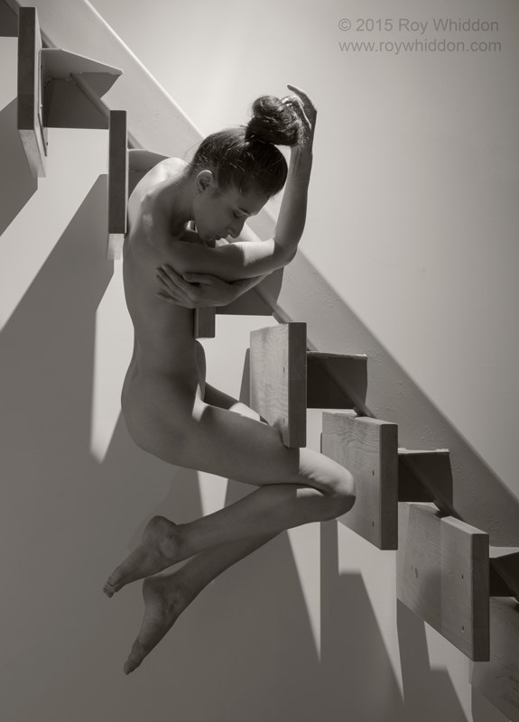 Stairburst II Artistic Nude Photo by Photographer Roy Whiddon