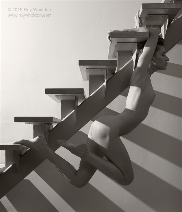 Stairburst III Artistic Nude Photo by Photographer Roy Whiddon