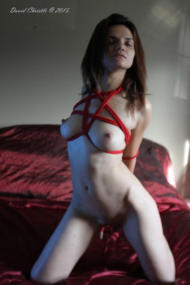 Star Artistic Nude Artwork by Model Diana Revo