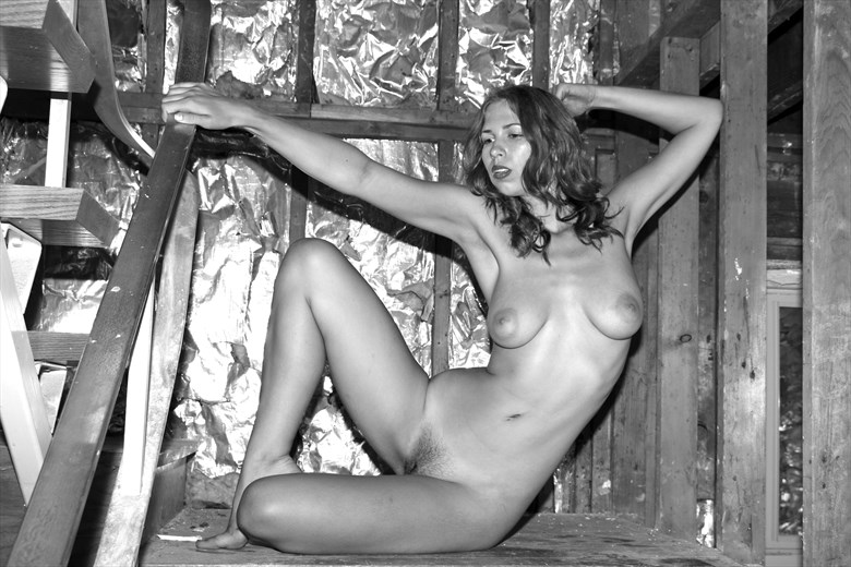 Starla Lost Artistic Nude Photo by Photographer Robert L Person