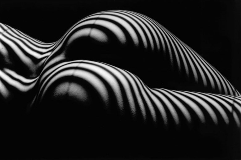 Striped Butt  Artistic Nude Photo by Photographer Perfect foto