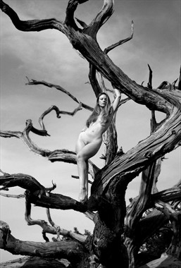 Stripped Artistic Nude Photo by Model Muse