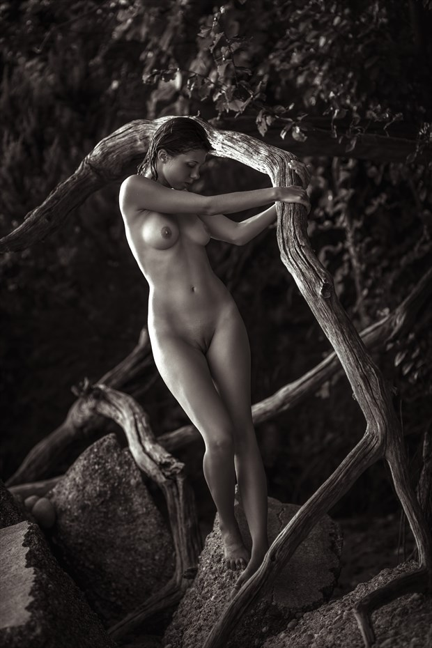 Summer girl Artistic Nude Photo by Photographer dml
