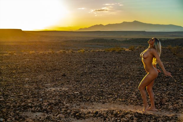 Sun Kissed Artistic Nude Photo by Photographer Muse Evolution Photography