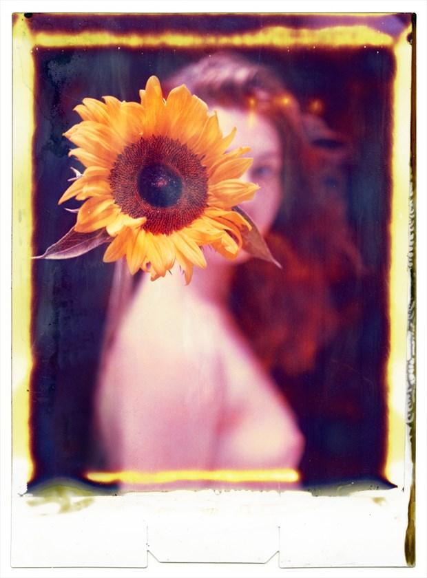 Sunflower Polaroid Artistic Nude Photo by Photographer RayRapkerg