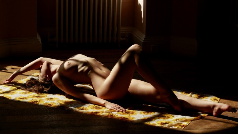 Sunlight & Sunflowers Artistic Nude Artwork by Model Rosa Brighid