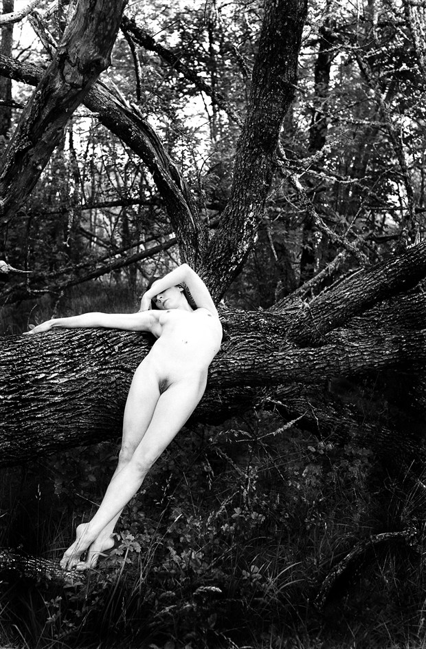 Sussane Reclined Artistic Nude Photo by Photographer Joe Klune Fine Art