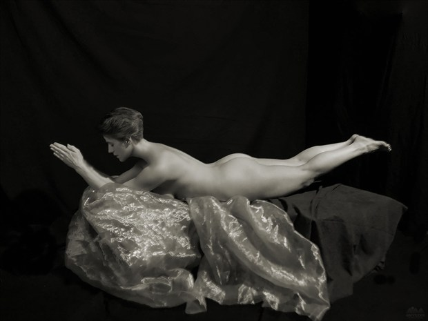 Swan Dive Artistic Nude Photo by Model Tricia DeAnne