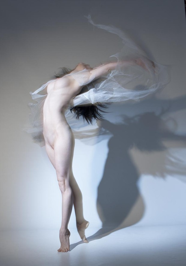 Swirl Artistic Nude Photo by Photographer John Evans