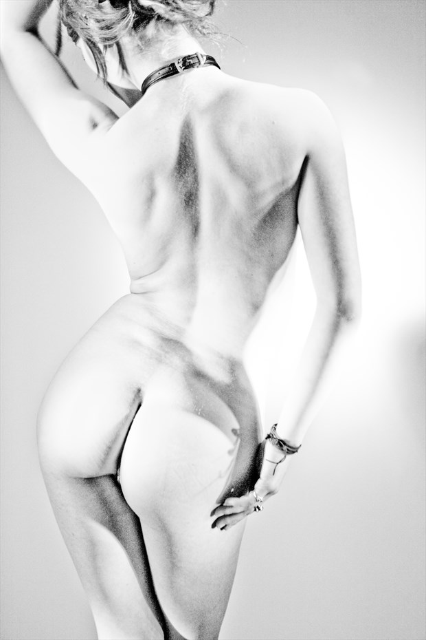 T%C3%A4nzerische Transparenz Artistic Nude Photo by Photographer Looking_Eye