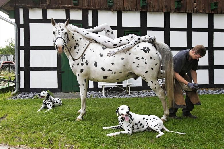 THE FARRIER I Surreal Artwork by Artist Bodypaint D%C3%BCsterwald