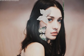 THE TOUCH OF THE BUTTERFLIES Fantasy Artwork by Photographer MOTHart