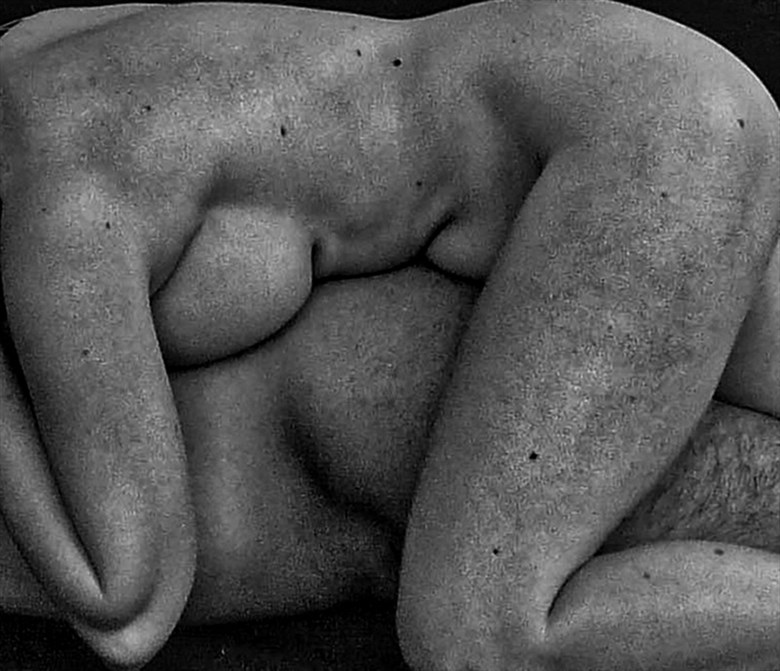 TORSOS I Artistic Nude Artwork by Photographer Vicente Mulholland