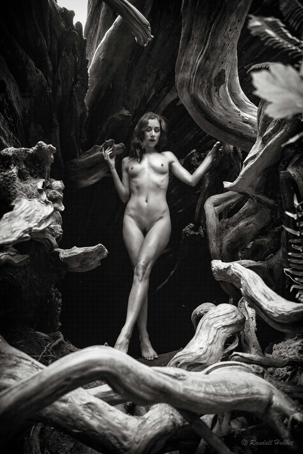 Temenos Artistic Nude Photo by Photographer Randall Hobbet