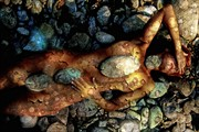 Tempus fugit with stones Artistic Nude Artwork by Photographer NUDE DREAMS