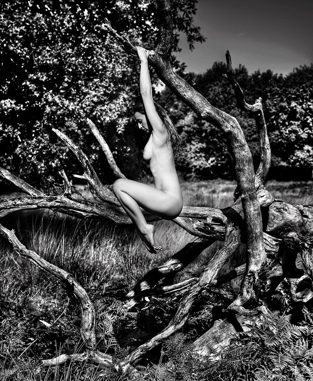 Tense Artistic Nude Photo by Photographer Poeticframe