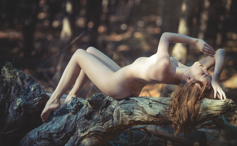 The Aseelie Dryad of Darkwood Artistic Nude Photo by Photographer Robertxc