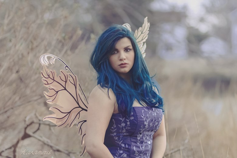 The Blue Fairy Fashion Photo by Photographer Alanamous