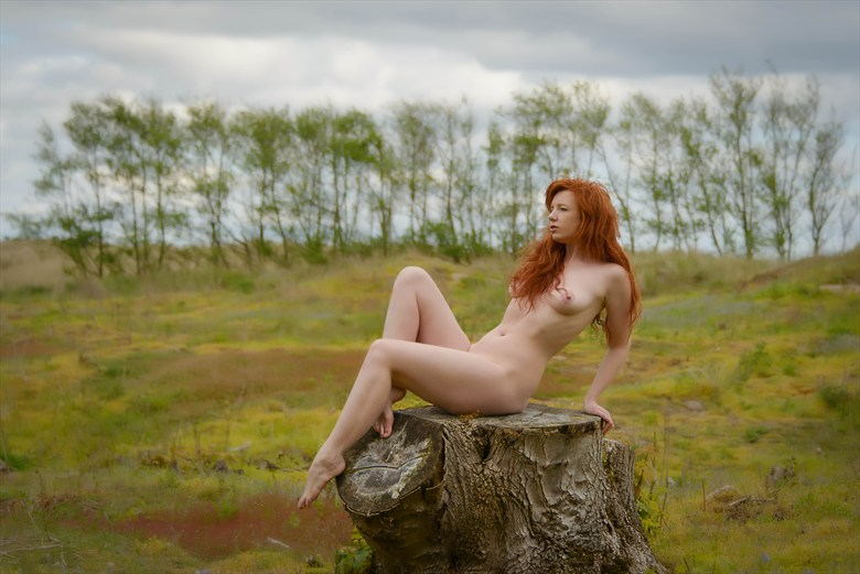 The Clearing Artistic Nude Photo by Photographer Rascallyfox