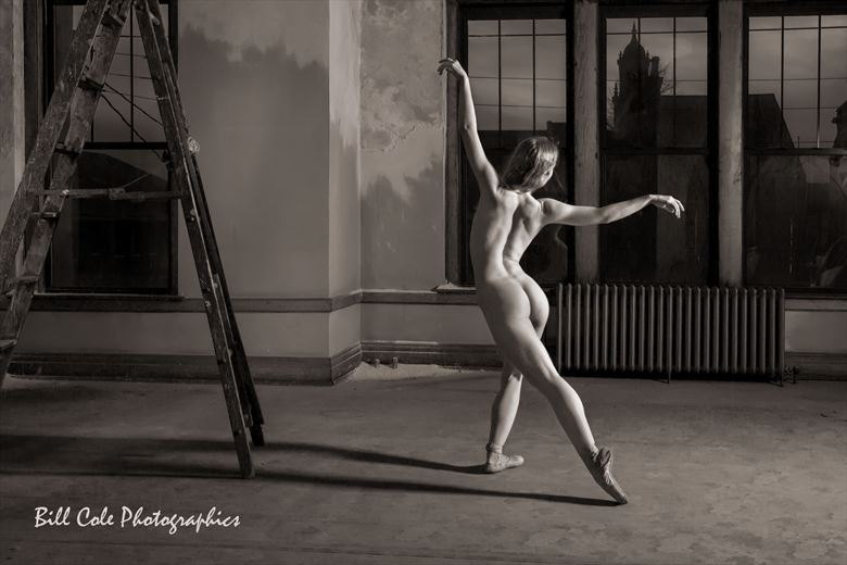 The Dancer Artistic Nude Photo by Photographer billcole