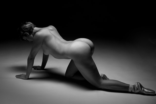 The Fallen Artistic Nude Photo by Photographer milchuk